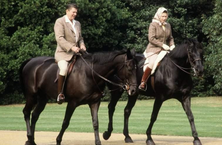 She-Obsessed-Horses